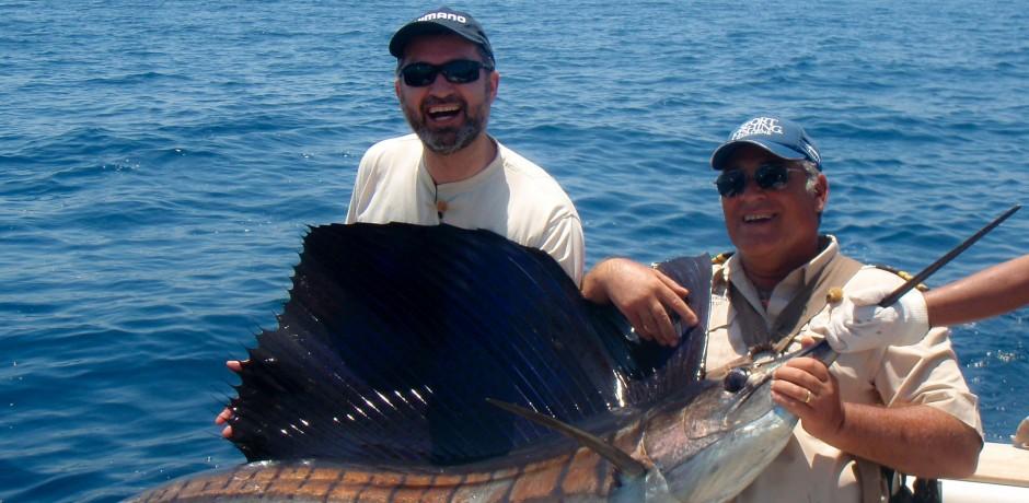 lawrence-sailfish-tred
